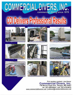 CDI Delivers Professional Results